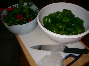 Peppers, knife and gloves