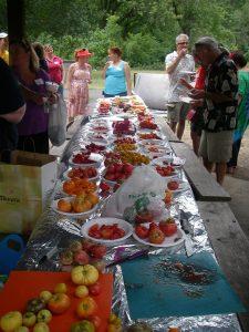 tomatotasting2012 010