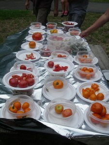tomatotasting2012 011