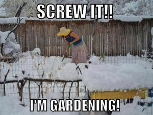 gardeningwinter