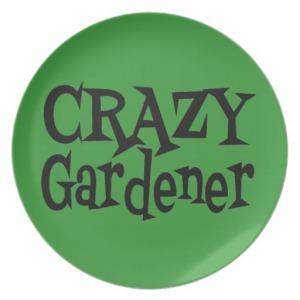 crazy_gardener_party_plate-r31442c04970c4888b518c6b2ca60f1e2_ambb0_8byvr_512