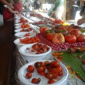 tomatoesgalore